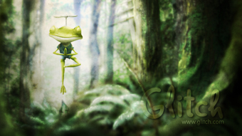 Yoga Frog Deepens his Practice in a Wooded Glen